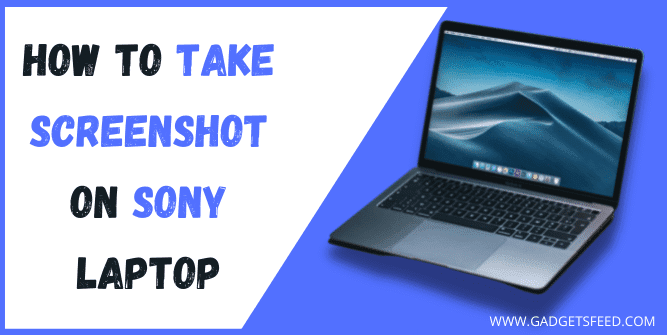 how to screenshot on sony laptop